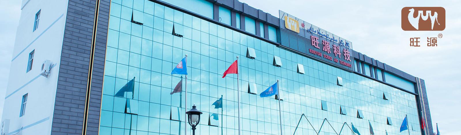 新疆网站建设案例